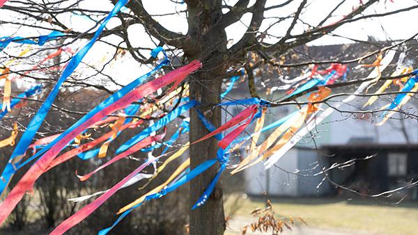 Außenfoto: An einem Baum hängen bunte Bänder, die im Wind fliegen.
